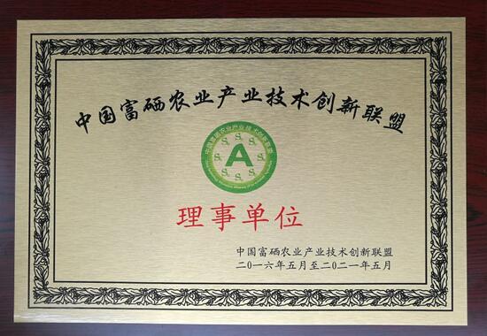 """""""科美纳.集团""""中文域名启用"""