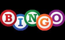 bingo域名