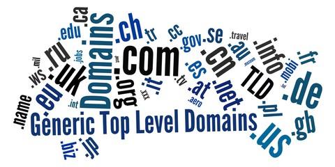 域名的重要性及注冊技巧