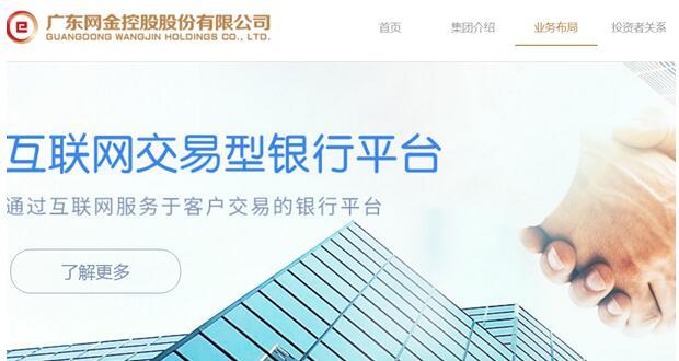 网金控股中文域名启用
