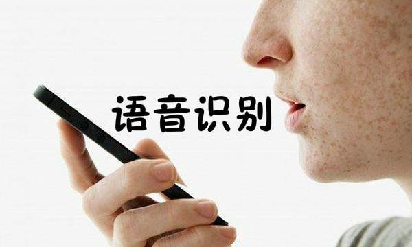 语音识别与域名寻址结合