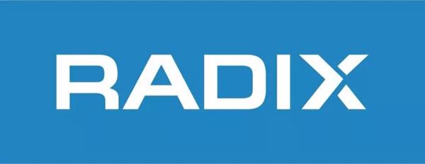 Radix注册局新顶级后缀启动中文域名注册