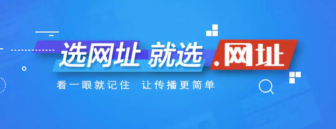 .网址中文域名
