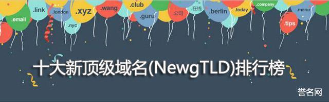 十大新顶级域名(NewgTLD)排行榜