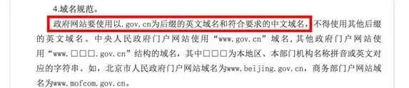 中文域名政策