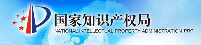 国家知识产权局发文加强政府网站域名管理通知