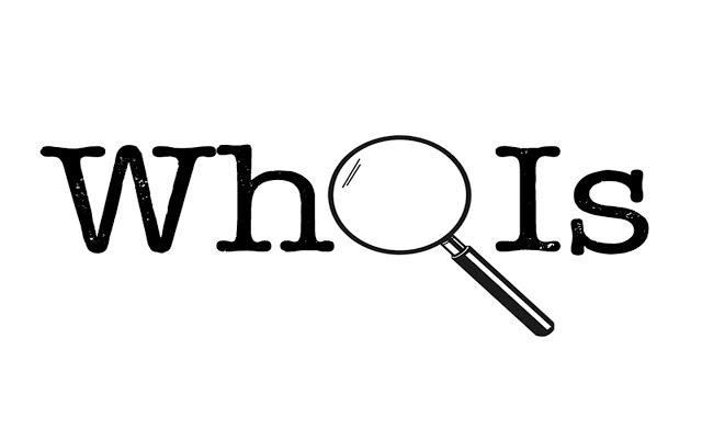 域名WHOIS查询