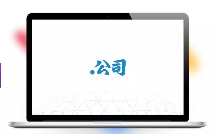 """中文域名"""".公司"""