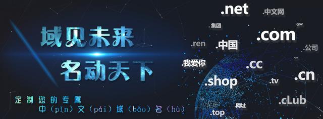 分析中文域名