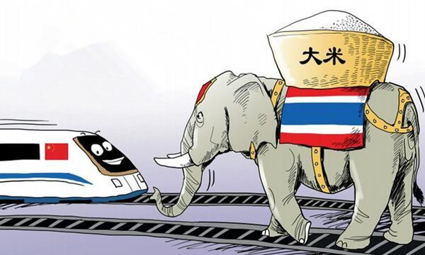 中泰.集团中文域名启用-迈向贸易全球化
