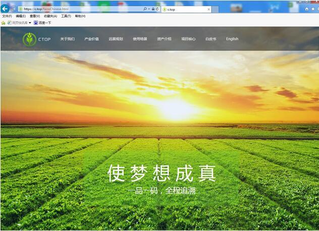 单字符.top域名被农业溯源区块链平台启用