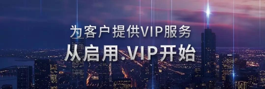 新顶级域名.vip域名